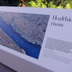 Healthier rivers